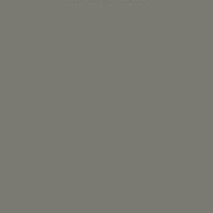 ورق هایگلاس دکوپنل رنگ طوسی مات روشن کد 503